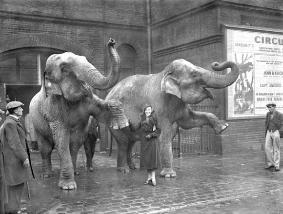 Maria Rasputin as an animal trainer at a London circus in 1934. (Photo: Planet News Archive/Getty Images)
