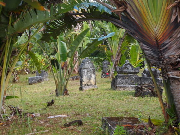 The-crumbling-cemetery-its-graves-half-covered-by-tall-swaying-grass-is-open-to-the-public.-640x480